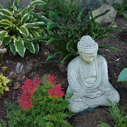 july 7 buddha and astilbe evelyns side.jpg
