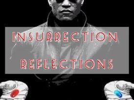 Insurrection Reflections