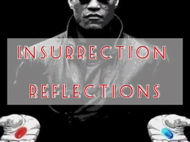 Insurrection Reflections