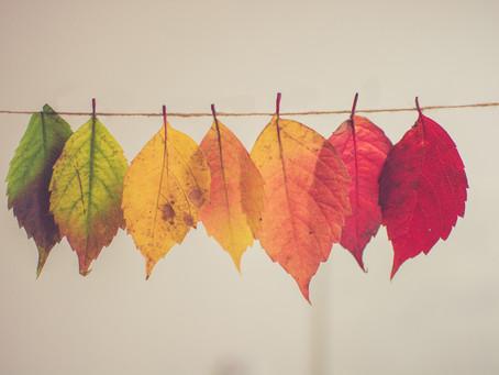 Understanding the Shades of Change