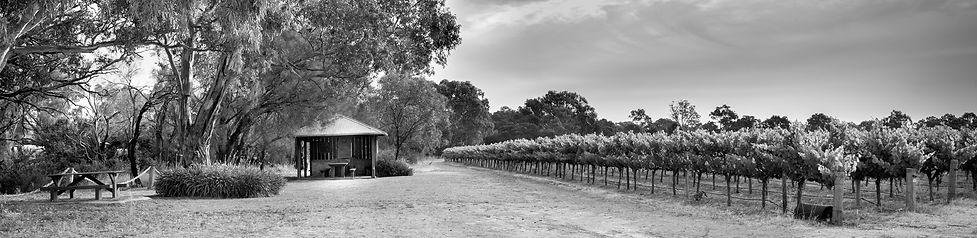Shottesbrooke Winery McLaren Vale Pickers Hut Picnic in the Vineyard
