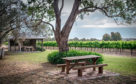 Shottesbrooke Winery McLaren Vale Pickers Hut Picnic in the Vineyard