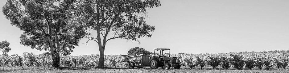 Shottesbrooke Winery McLaren Vale Vineyard Tractor