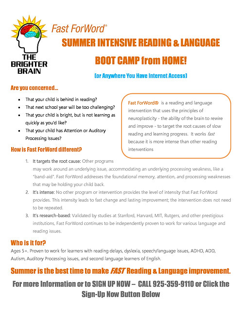 SUMMER INTENSIVE READING & LANGUAGE  BOOT CAMP from HOME!
