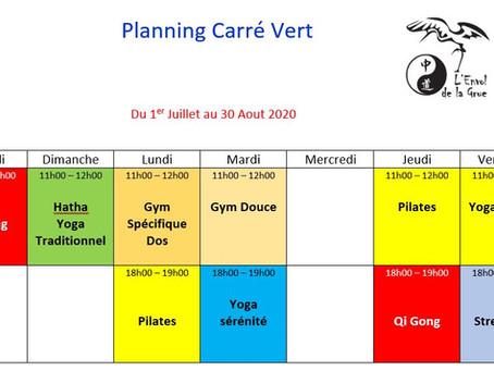 Planning du Carré Vert