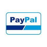payment+online+transaction+payment+metho