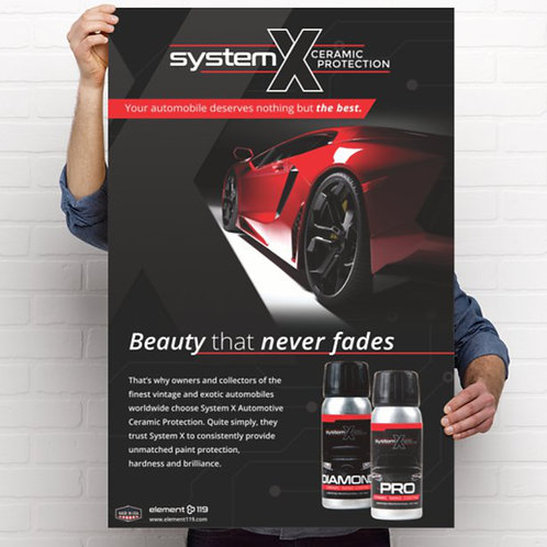 "System X ""Beauty that Never Fades"" Poster"
