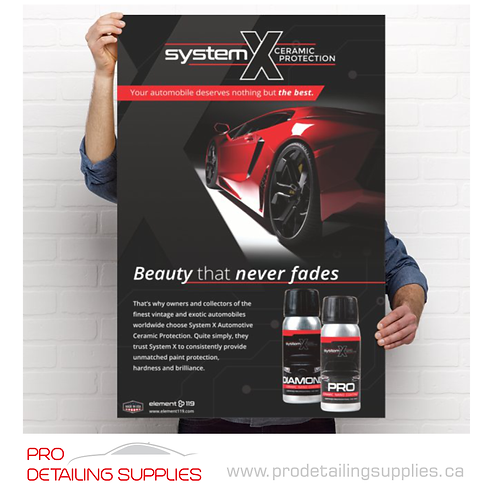 """System X """"Beauty that never fades"""" Poster"""