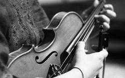 violin_edited