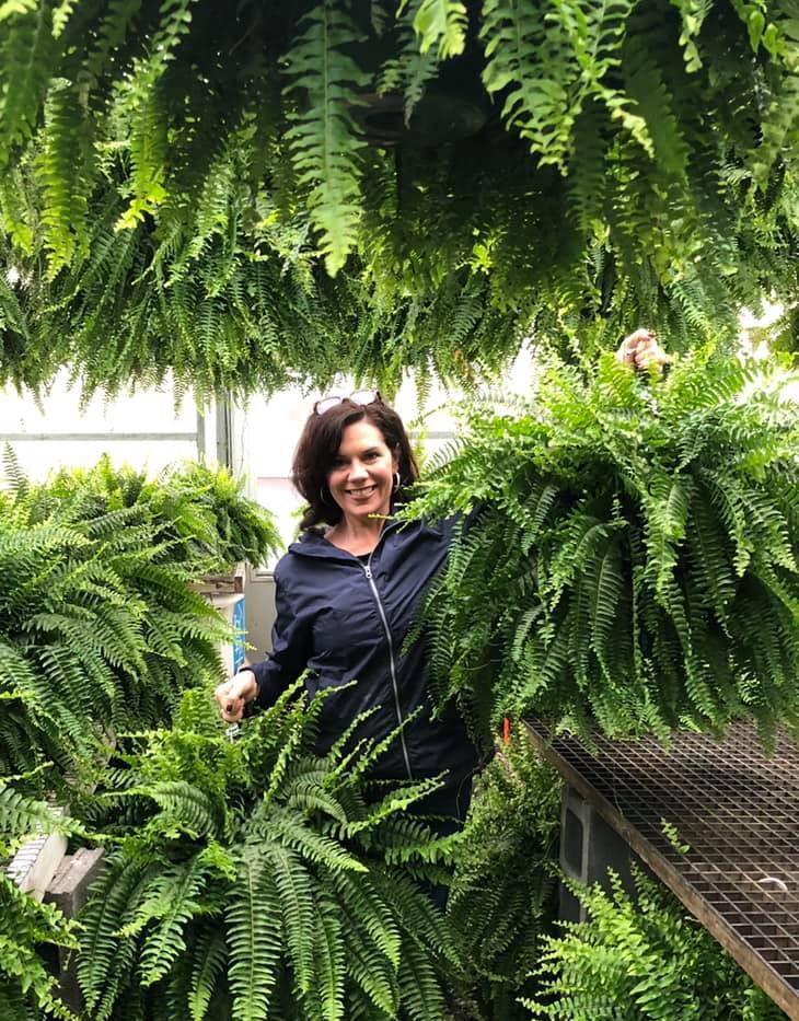Ferns with Wendy.jpg