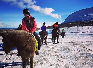 Rida på Islandshästar