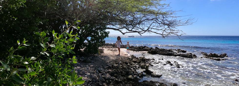 Plage Bonaire.JPG