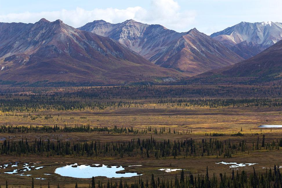 Wide open landscape of Alaska