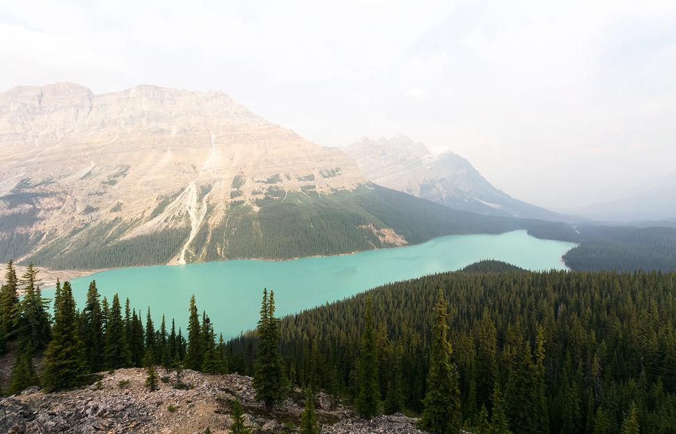 Peyto Lake, BC, Canada