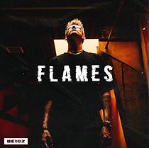 Bergz Flames