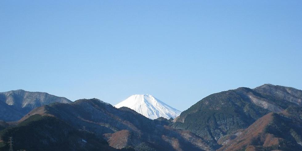 『まったり♪ハイク-2021』~⑤:相模湖南・石砂山&峰山