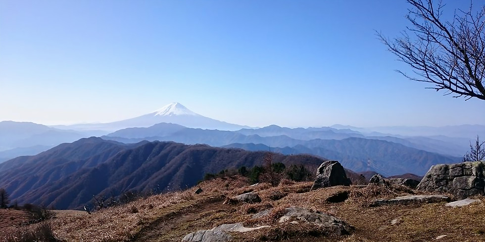 「会員感謝DAY企画」:爽秋の南大菩薩・小金沢連嶺縦走(日帰り)