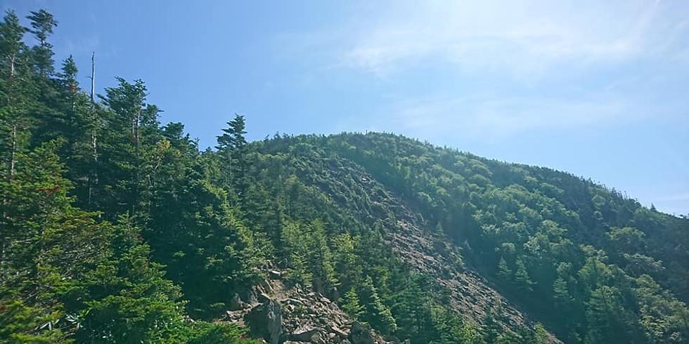 【富士登山前提①】徳ちゃん新道で甲武信ヶ岳へ!