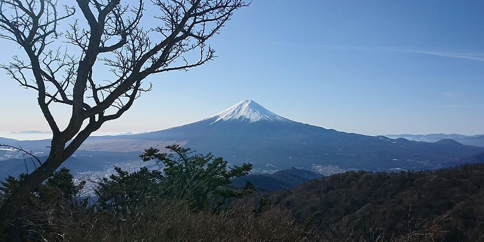 「リハビリ登山~①」悠々歩く・・・三ツ峠山