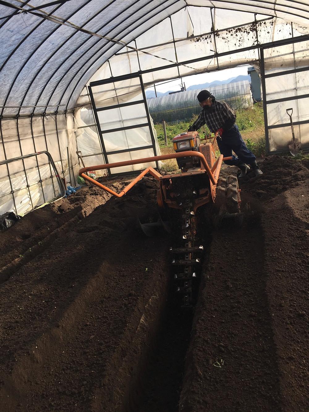溝施肥(ミゾセヒ)トレンチャーを使って溝を掘っている様子1