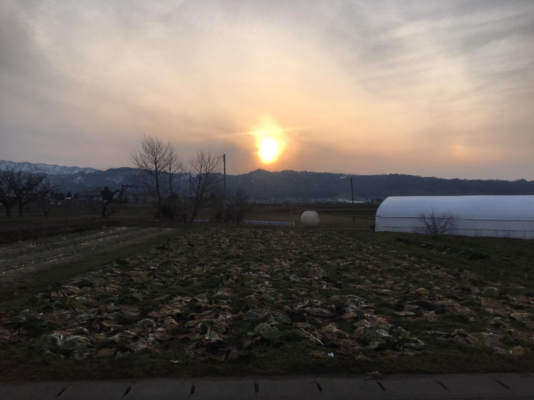 畑からの夕日