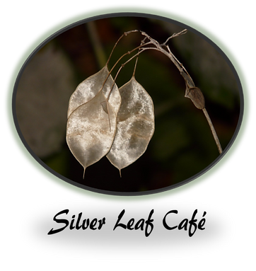 Three silver leaves dangle from a dry branch