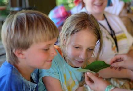 two children examine a leaf