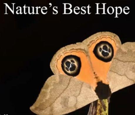 NaturesBestHope_edited_edited_edited.jpg