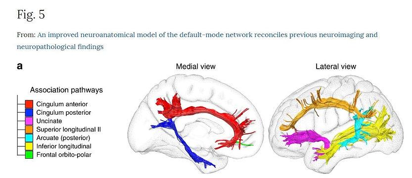 neurofeedback rennes bien-être santé praticien