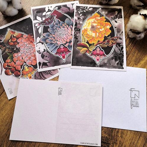 Tutti Carte postale - Le Lot