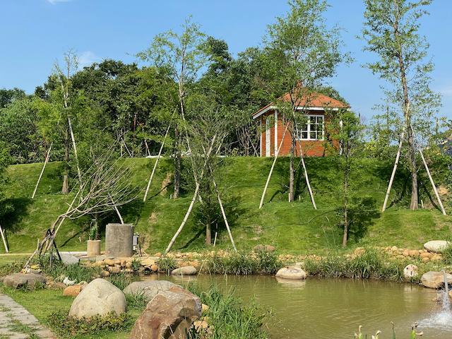 Pond and Garden