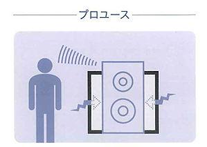 shizuka-pro.jpg