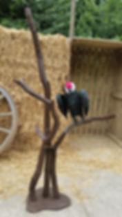 Vulture on a branch | Dallas Event Services