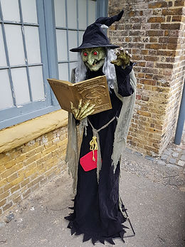 Witch Spell Reader | Dallas Event Services