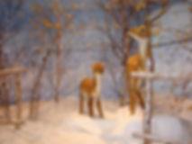 Life Like Reindeer Mother and Baby 2 (2)