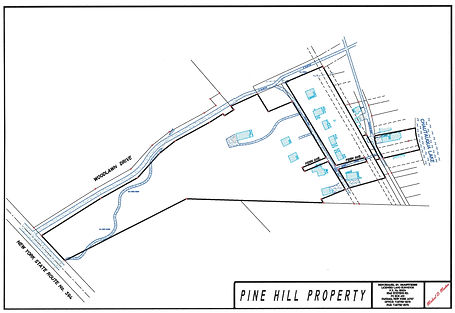 Pine Hill Survey Map