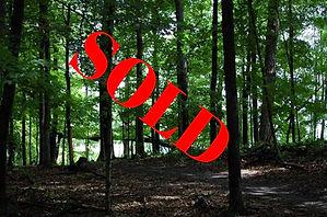 kurtz-woods-natural-area_f_edited.jpg