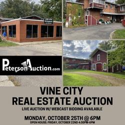 Vine City Real Estate
