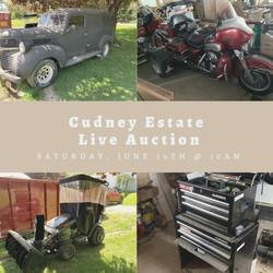 Cudney Estate Live