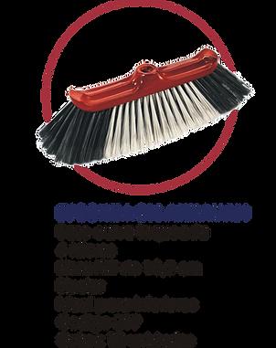escobillon arrayan