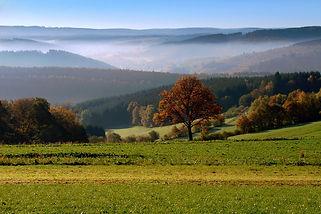 2.-Herbstmorgen-bei-Volnsberg.jpg