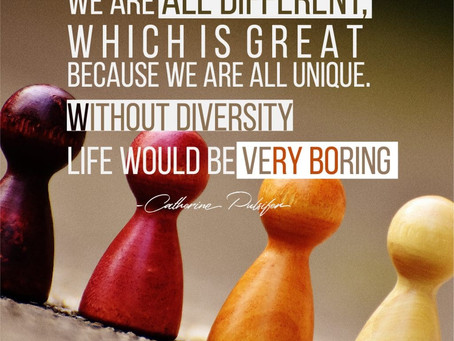 Diversity VS Stereotypes by Nicole Nadeau