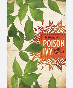 In Praise of Poison Ivy