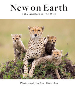 New on Earth Cover
