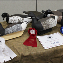 CDE 13 - Brant ribbons.png