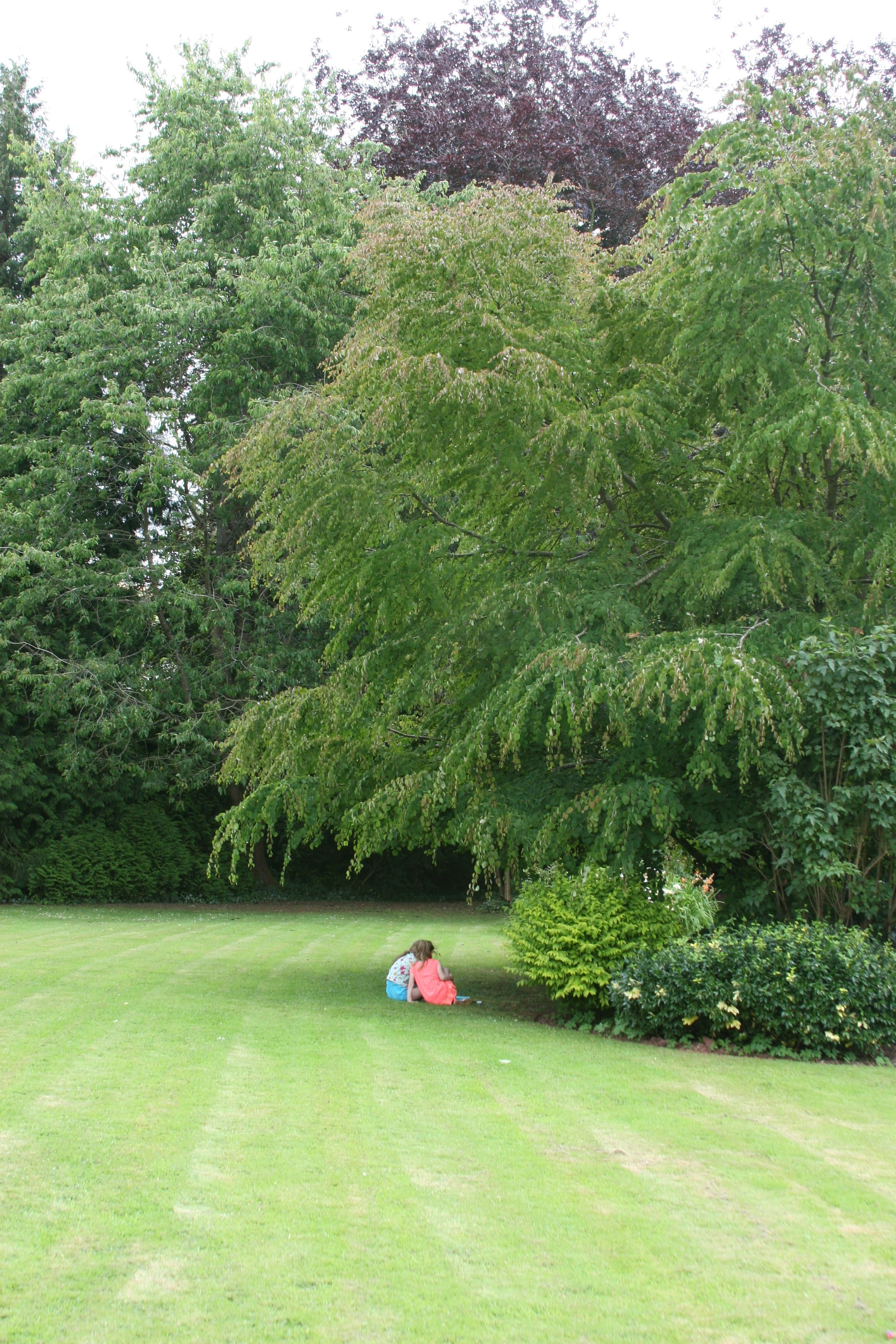 Extensive gardens