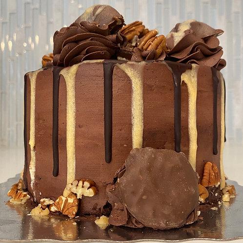 CAKE Turtle (#106)