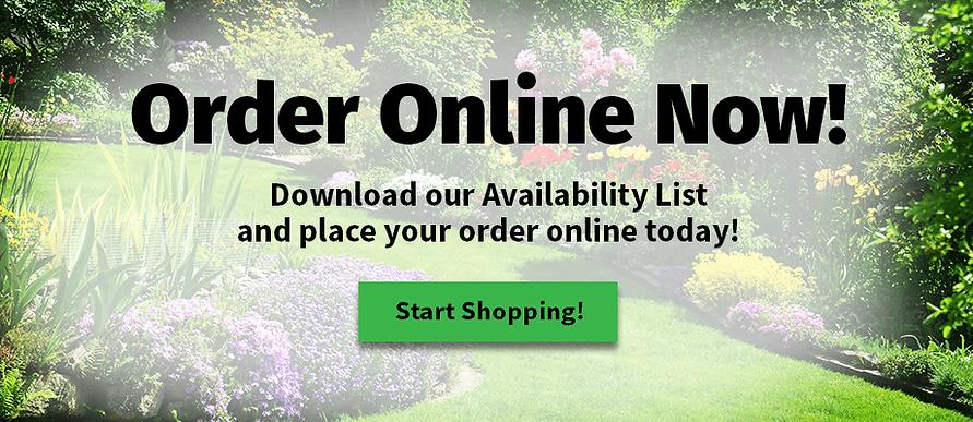 OnlineOrdering_Tulip.png