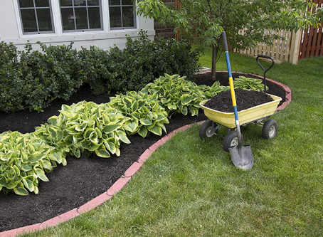 The Mysteries of Mulch