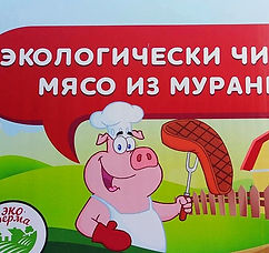Мясо из Муранки_edited.jpg